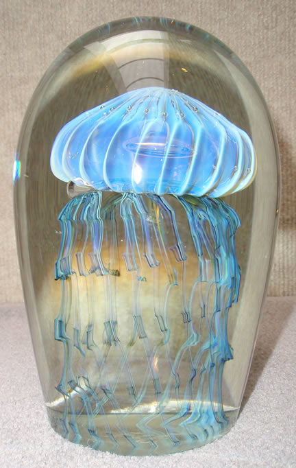 Jelly                     Fish Medium